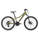Giant Kid's XTC JR 24 Disc (2020) Mountain Bike