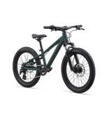 Giant Kid's STP 20 FS Trekking Green (2021)