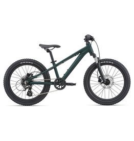 Giant Kid's STP 20 FS Trekking Green (2021)