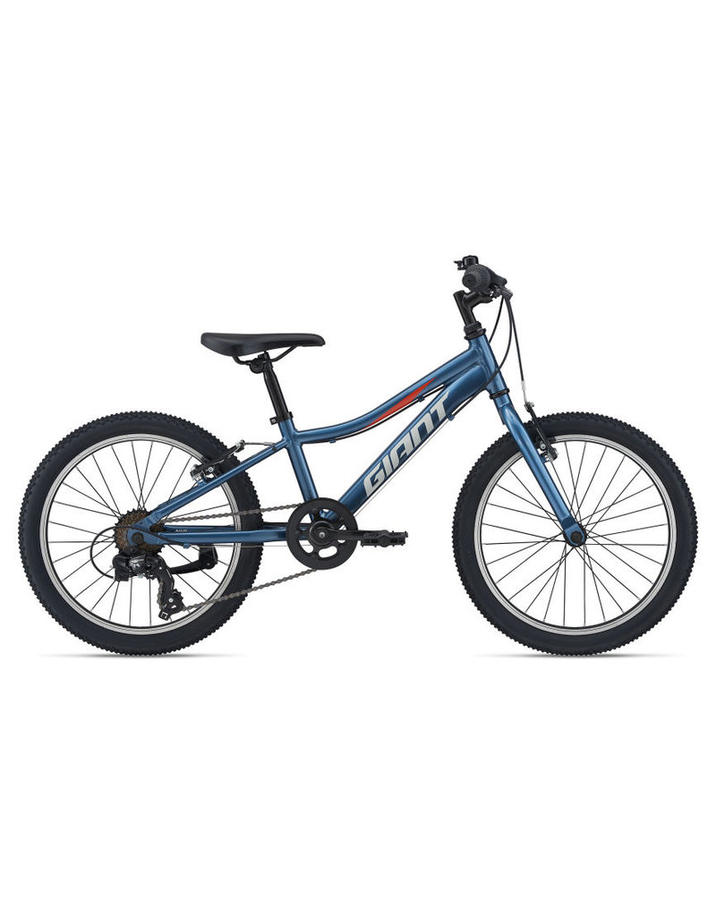 Giant Kid's XtC Jr 20 Lite Blue Ashes - 2021