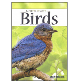 Blue Line Book Exchange Northeast Birds Playing Cards Deck