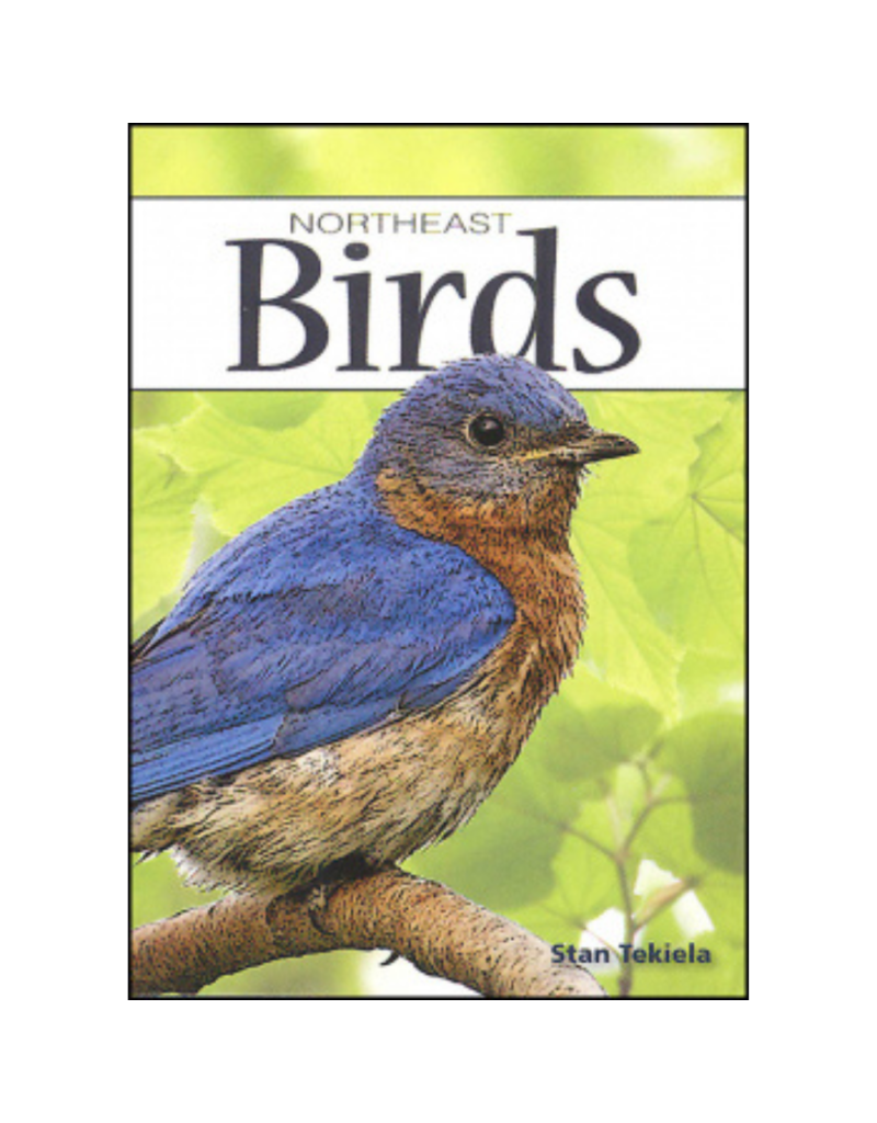 Blue Line Book Exchange Northeast Birds Playing Cards Deck