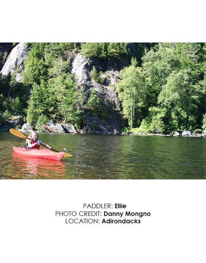 Werner Paddles Kid's Sprite 2pc. Small Shaft 200cm Kayak Paddle