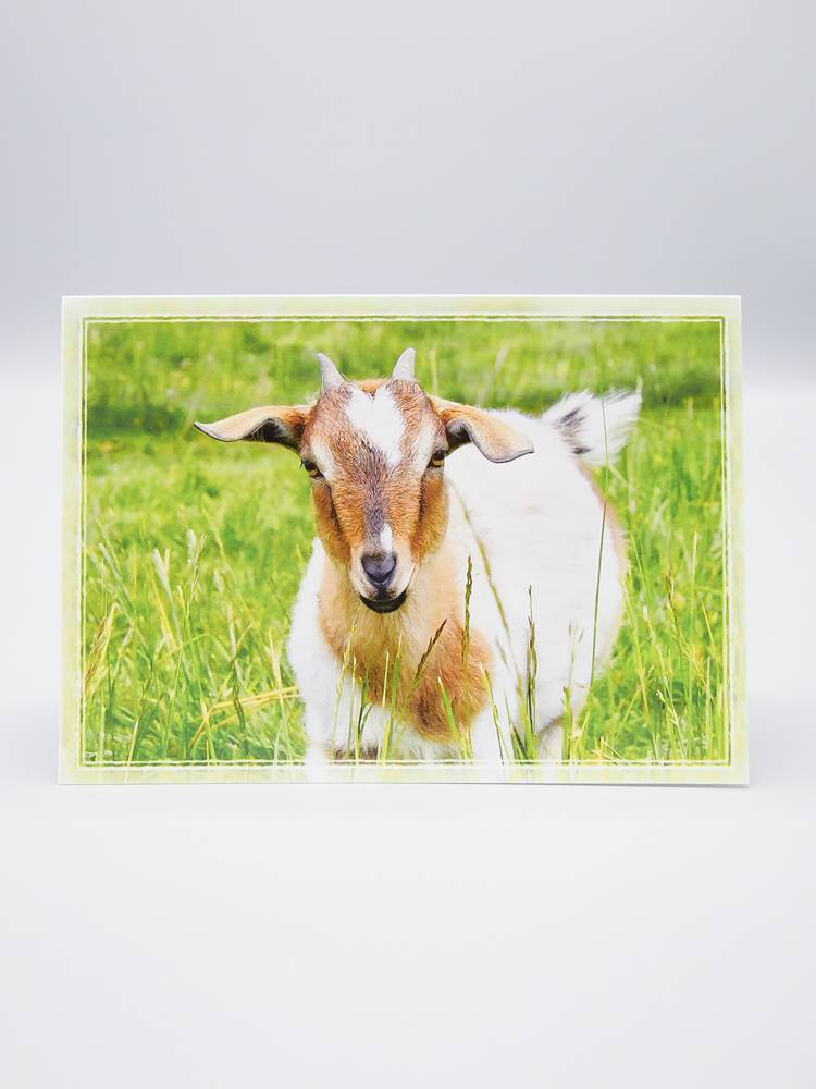 Out To Pasture Card Pippi