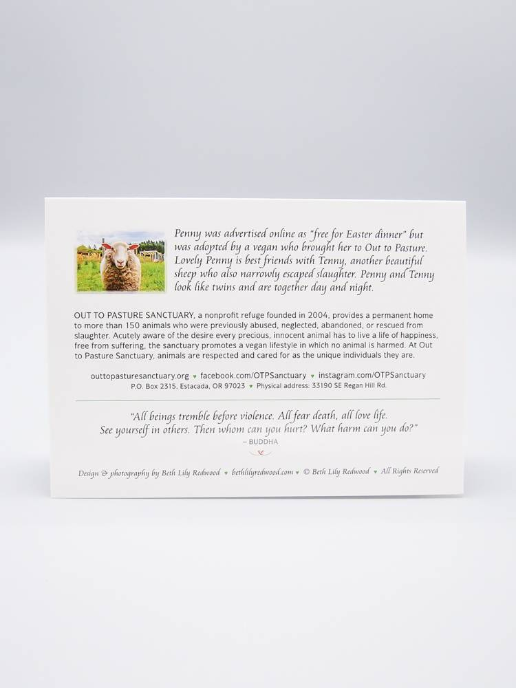 Out To Pasture Card Penny