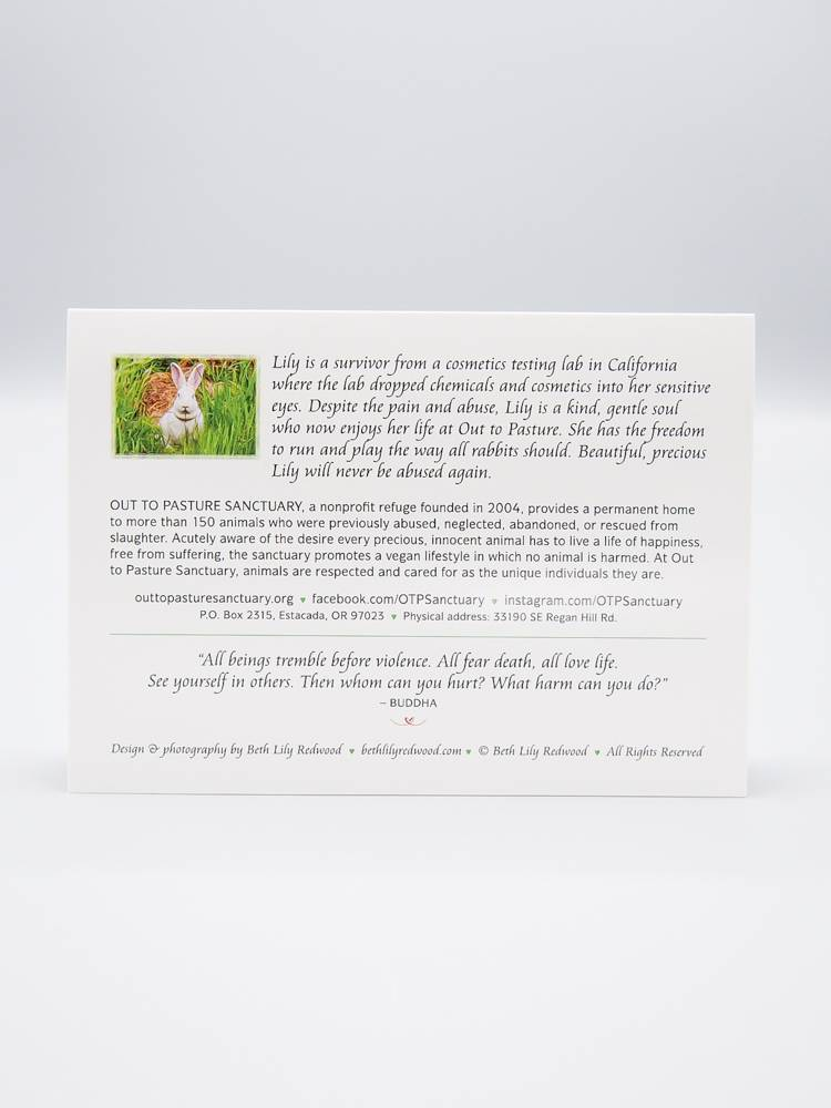 Out To Pasture Card Lily