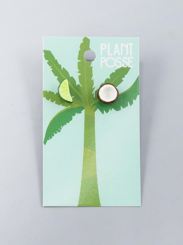 Plant Posse Lime & Coconut Post Earrings