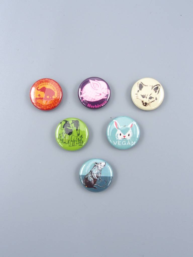 Animals Mini Magnet Set