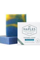 Naples Soap Company Natural Soap 2 Pack Ocean Breeze