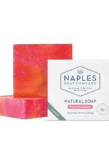 Naples Soap Company Natural Soap 2 Pack Pure Paradise
