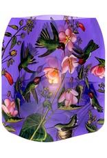 Modgy Luminary Hummingbird