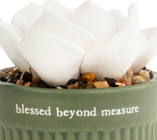Demdaco Succulent Oil Diffuser - Blessed Beyond Measure