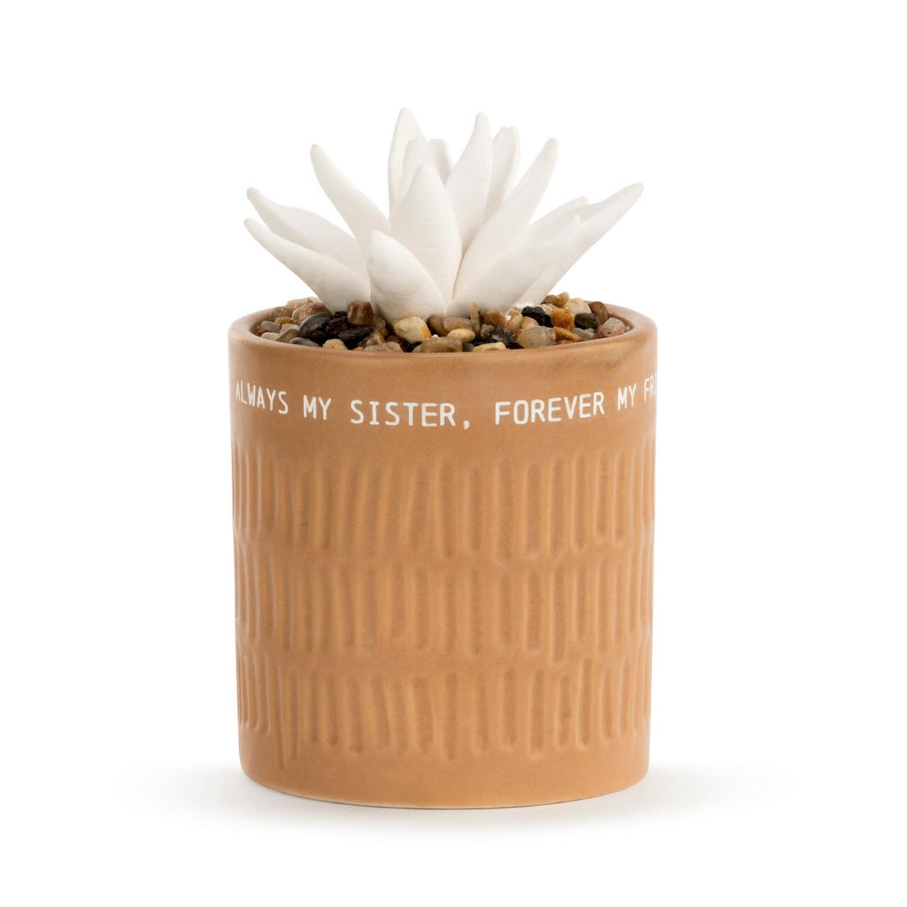 Demdaco Succulent Oil Diffuser - My Sister