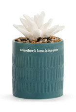 Demdaco Succulent Oil Diffuser - Mothers Love