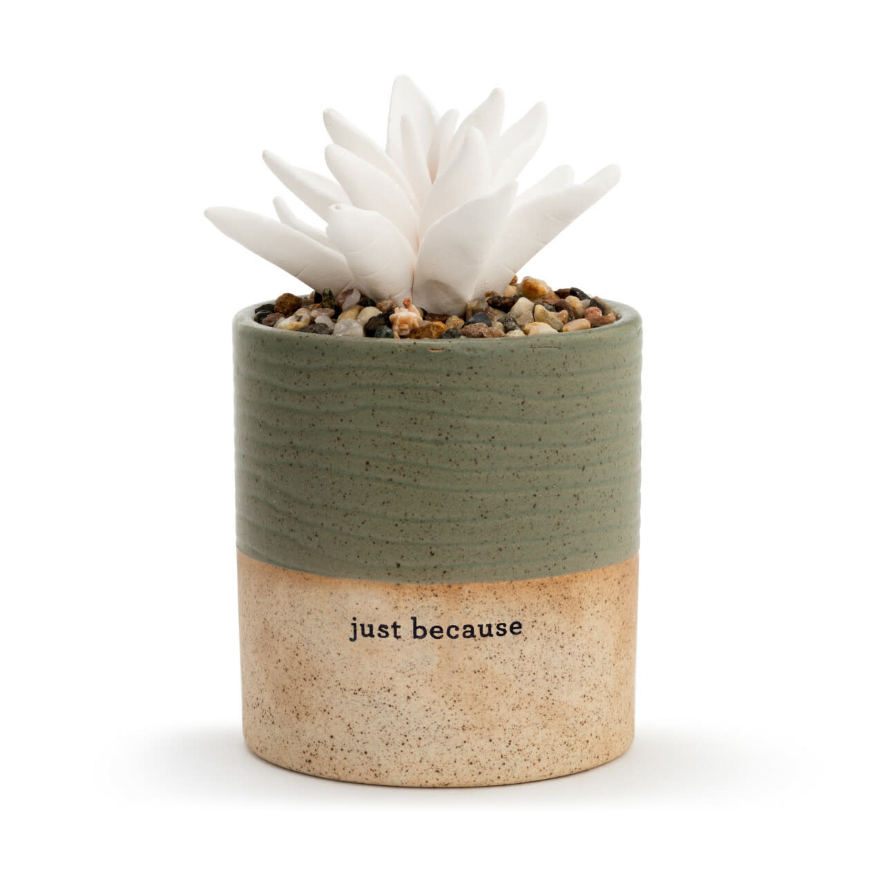 Demdaco Succulent Oil Diffuser - Just Because
