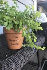 Buffalovely I'm Literally Dying Flower Pot
