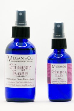 Ginger Rose Spritzer