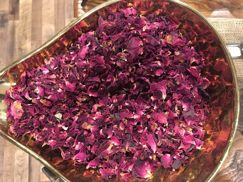 Rose Materia Medica