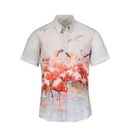 Alexander McQueen N/A - Alexander McQueen Flamingo Shirt