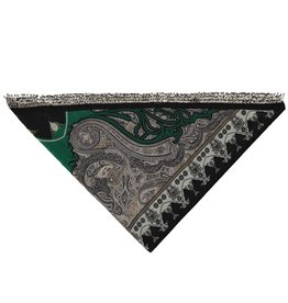 Etro N/A - Etro Cashmere and Silk Green Scarf