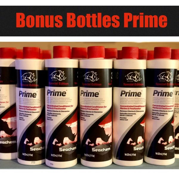 SEACHEM LABORATORIES Seachem Prime BONUS Bottle