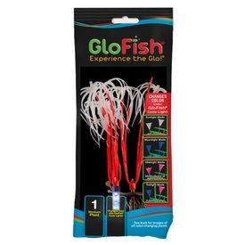 Tetra Tetra Glofish Plant Orange, Medium