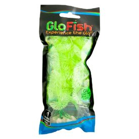 Tetra Tetra Glofish Plant Yellow, Medium