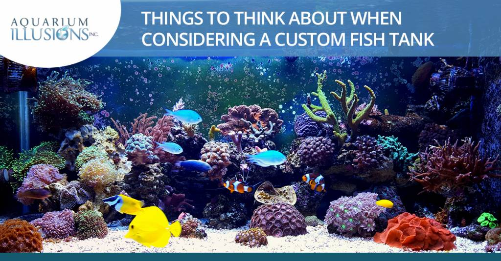 Things to Think about When Considering a Custom Fish Tank