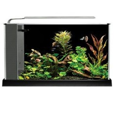 Aquarium Kits Under 20 Gallons