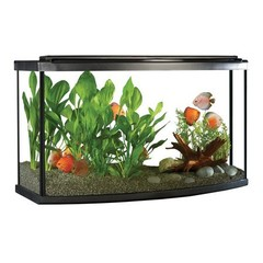Aquarium Kits 20 to 55 Gallons