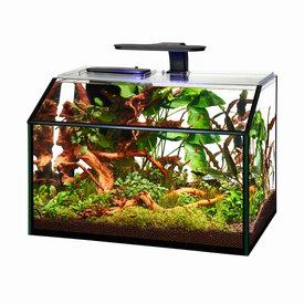Aqueon Aqueon Designer 8.75G LED Shrimp Aquarium Kit