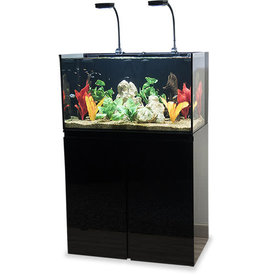 JBJ USA JBJ Rimless Flat Panel AIO 65 Gal. Aquarium and Black Stand