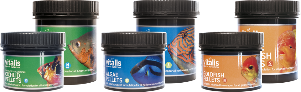 How Vitalis fish food is made and how it differs.