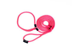 Products tagged with leash harness