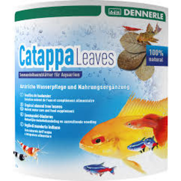 Dennerle Dennerle Catappa Almond Leaves, 10 pc