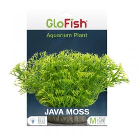 Glofish GloFish Java Moss