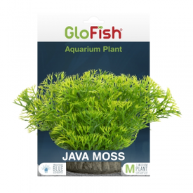 Glofish GloFish Javamoss