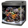 Coralife LED Biocube 32 Gallon