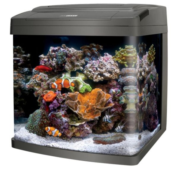 Energy Savers Unlimited Coralife LED Biocube 32 Gallon