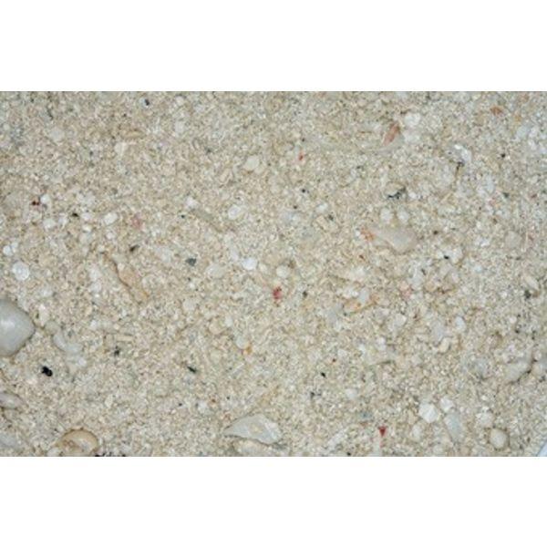 Carib sea CaribSea Ocean Direct Original Sand 20lb