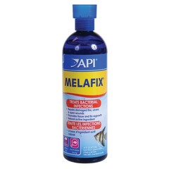 Products tagged with Freshwater Fish Bacterial Infection Treatment