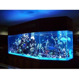 Aquarium Illusions Diamond Shape by Aquarium Illusions