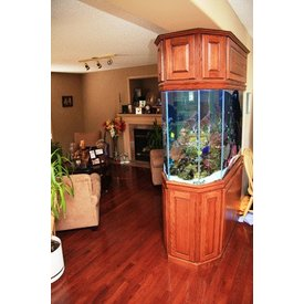 Aquarium Illusions Hex End Tank by Aquarium Illusions