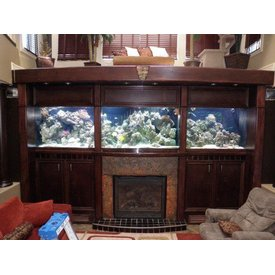 Aquarium Illusions 10' Super Duper Display, Tank by Aquarium Illusions