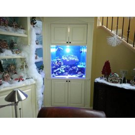 Aquarium Illusions Built In w/filtration under stairs by Aquarium Illusions