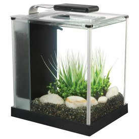 Fluval Fluval Spec III 2.6 Gallon Aquarium