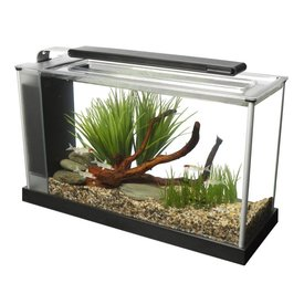 Fluval Fluval Spec V 5 Gallon Aquarium