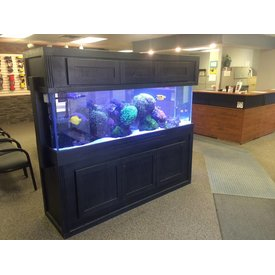 Waiting Room Tank by Aquarium Illusions