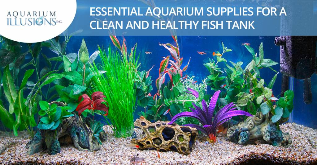 Essential Aquarium Supplies For A Clean And Healthy Fish Tank