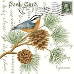 - ALICE'S COTTAGE NUTHATCH FLOUR SACK TOWEL